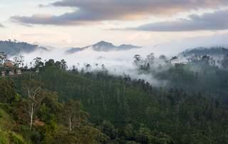<b>Srí Lanka – hory, pláže, sloni a čajové plantáže</b>