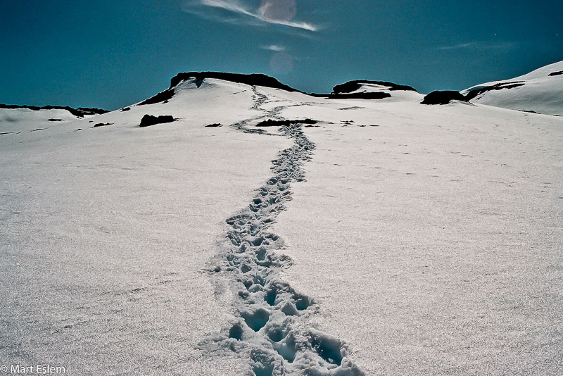 Antarktida a stopy ve sněhu