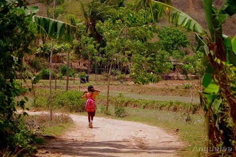 Cesta ze školy