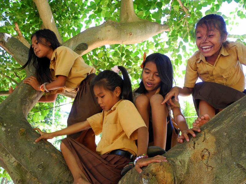 Studentky, nebo opice?