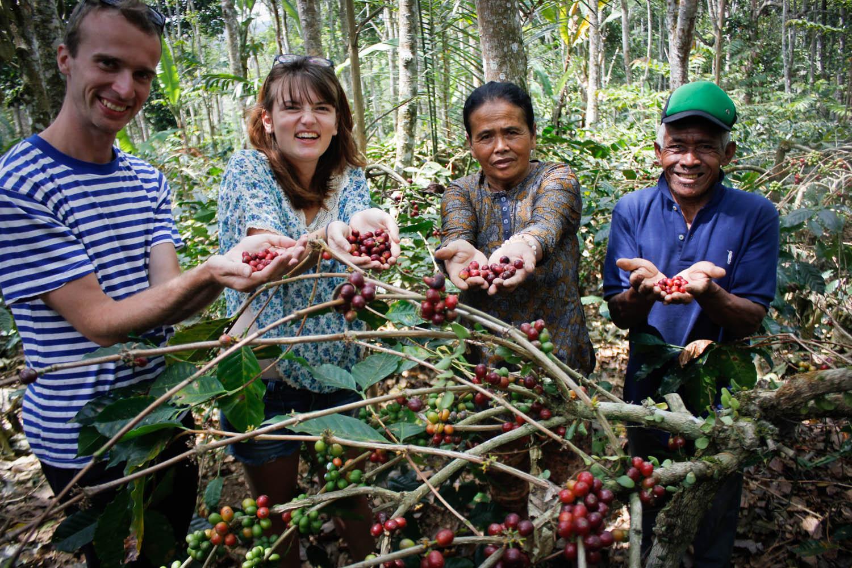 Na kávové plantáži na Bali