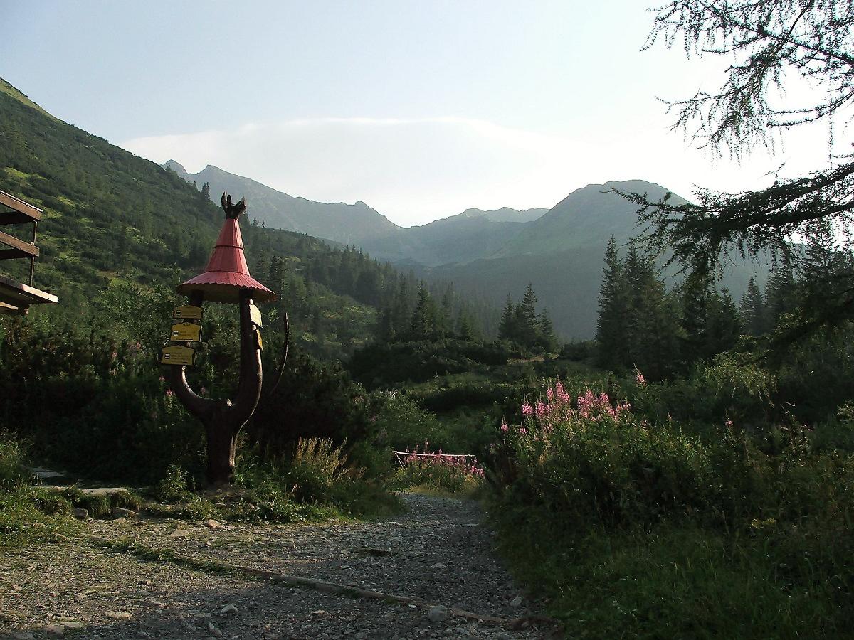 Roháče od Žiarskej doliny (Petra Konárska)
