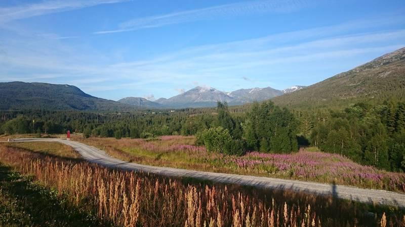 Příroda v oblasti Vefsn