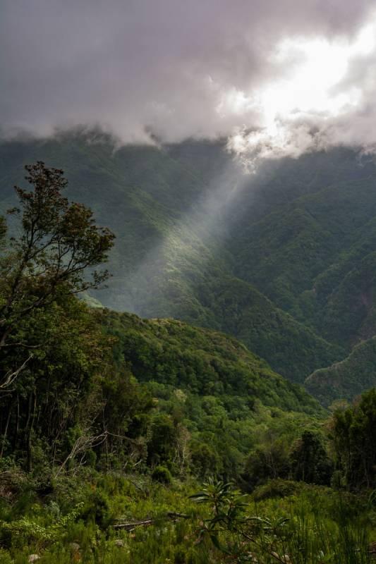 Vnitrozemí, kde si opravdu připadáte jako v deštném pralese