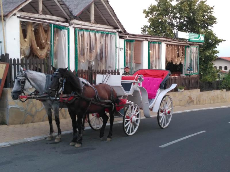 Koňský povoz Bulharsko