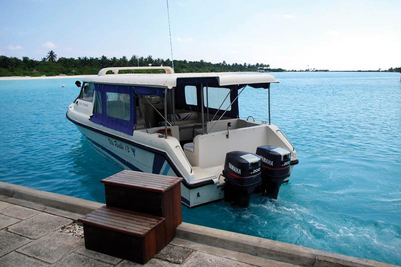 Rychloloď, Maledivy