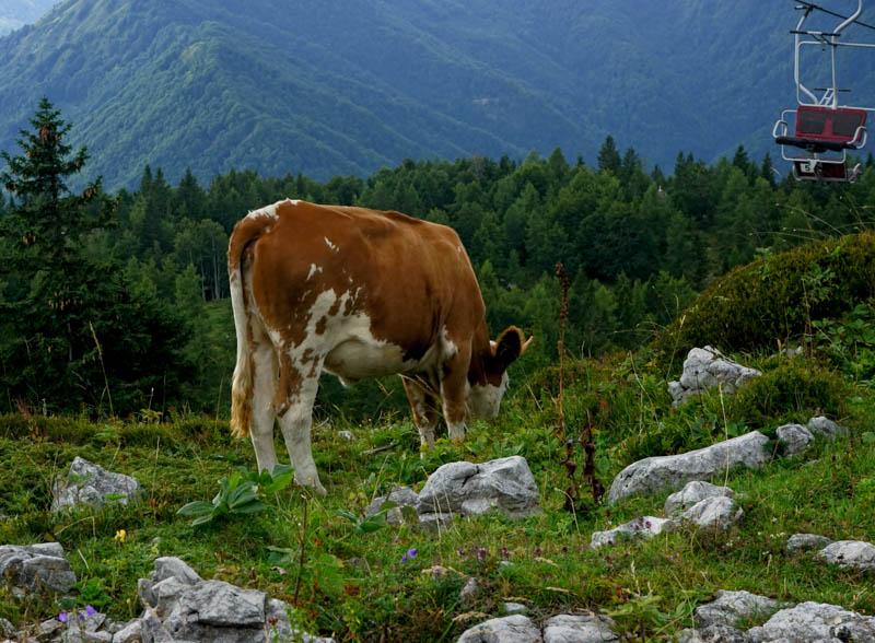 Slovinsko příroda
