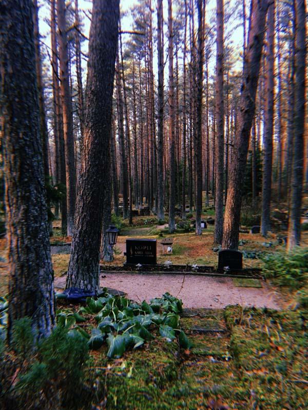 průvodce tallinn lesní hřibitov